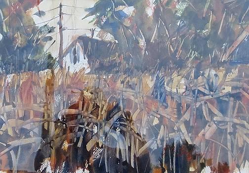 Fall Corn II by JULES Buffington