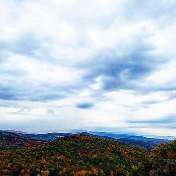 Fall Day by Hillary Raimo