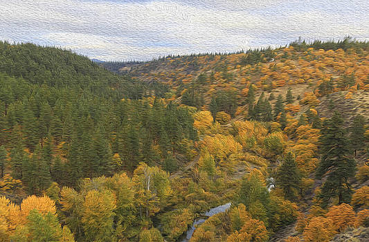 Fall foliage over Valley  by Jessica Nguyen