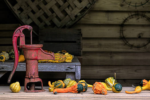 Fall Gourds by Richard Macquade