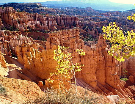 Marty Koch - Fall in Bryce Canyon
