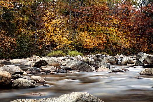 Fall in Maine by Angela Tice Gunn