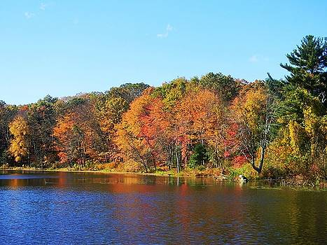 Fall In Massachusetts 2 by Diane Valliere