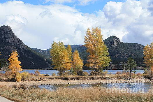 Fall In The Mountains by Teresa Thomas