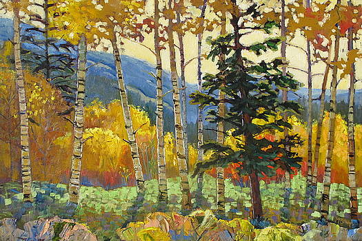 Fall in the San Juans by Susan McCullough