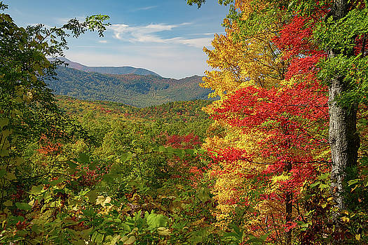 Fall in the Smoky Mountains by Dave Files