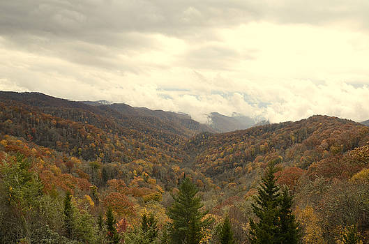 Fall in the Smoky Mtns. by Charles Bacon Jr