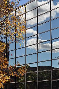 Fall Mirrored by Diana Nigon