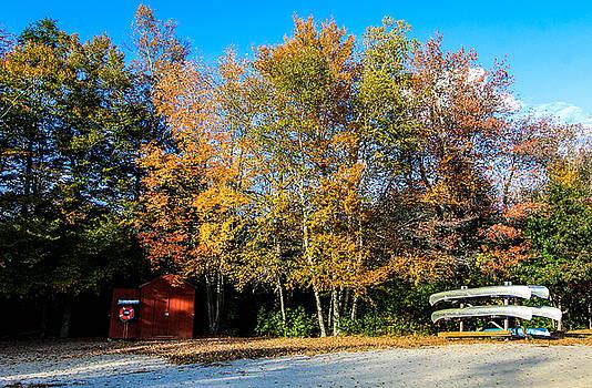 Fall Moment by Jennifer Ansier