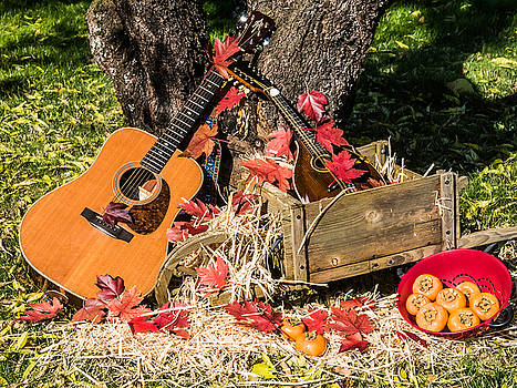 Mick Anderson - Fall Music and Persimmons