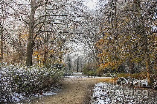 Patricia Hofmeester - Fall park in snow