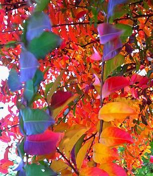 Fall Pastels by Katia Creole Art