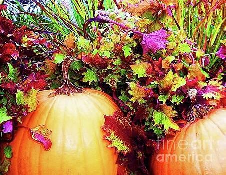 Fall Pumpkin 2 by Diana Chason
