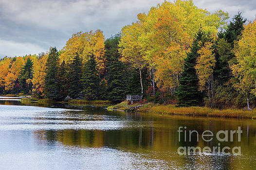 Fall River in Prince Edward Island by Verena Matthew