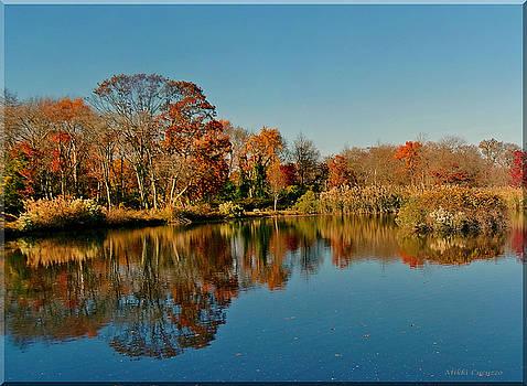 Fall scene by Mikki Cucuzzo
