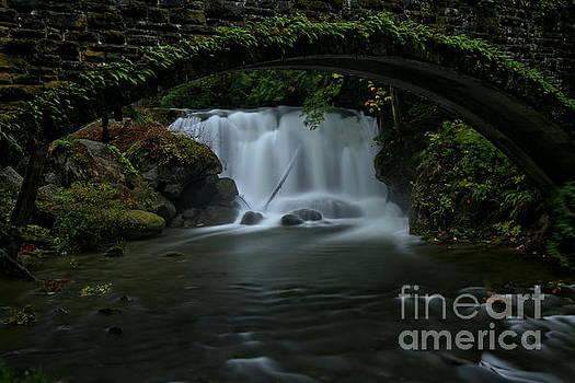 Adam Jewell - Falling Under The Bridge In Whatcom