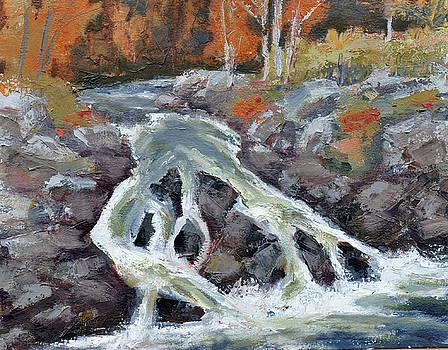 Falls at Perkins Cove by Mary Byrom
