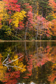 Falls Reflection by Dan Girard