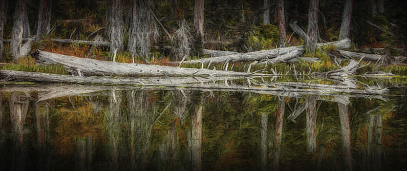 Fall's Still Waters by Paul Bartell