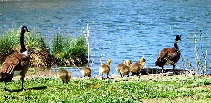 Family Time at the Pond by Bobbee Rickard