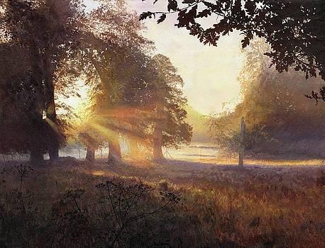 Fangorn by Helen Parsley