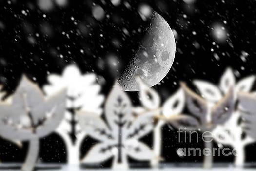 Fantasy Christmas scene with moon by Simon Bratt Photography LRPS