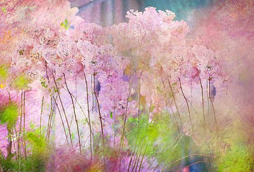 Jenny Rainbow - Fantasy Garden of Spring