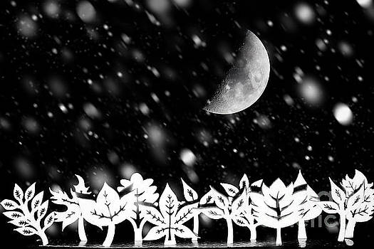 Fantasy winter Christmas scene by Simon Bratt Photography LRPS