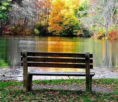 Farewell Autumn by Angela Davies
