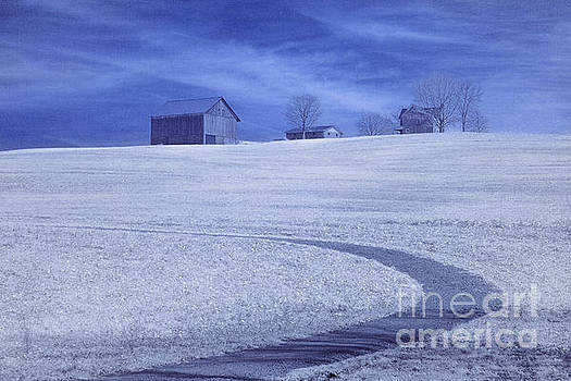 Randy Steele - Farm and Barn Infrared