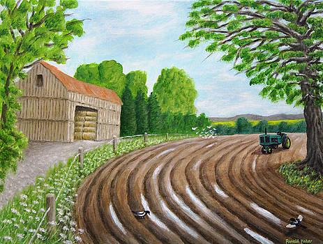 Farm in Lymm by Ronald Haber