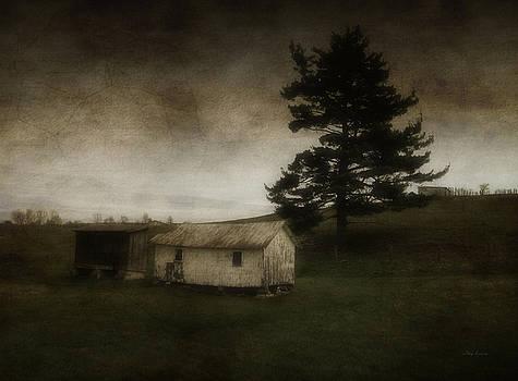 Farm Landscape by Cynthia Lassiter