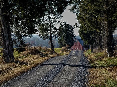 Farm Lane by Robert Geary