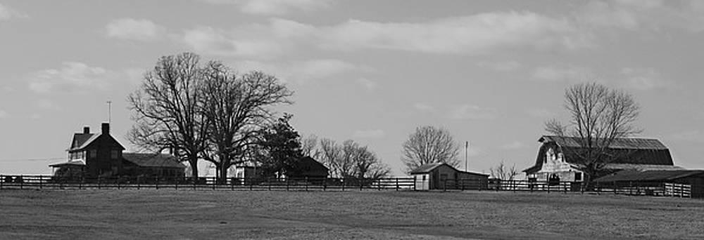 Farm Life by Julian Bralley