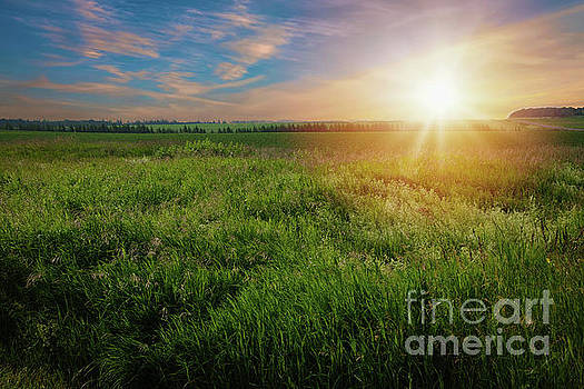 Farm Sunrise by Verena Matthew