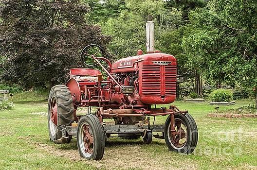 Farmall Tractor by Debbie Green
