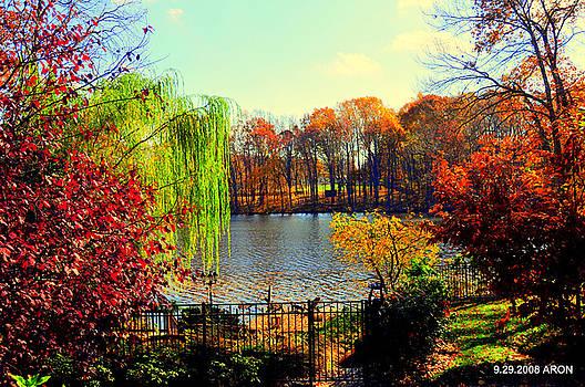 Farrington Lake by Aron