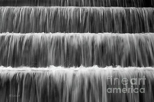 FDR Memorial Waterfall by E B Schmidt