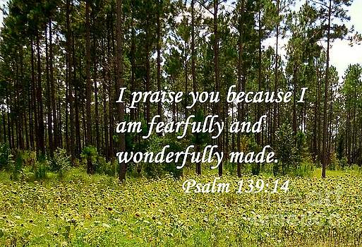 Fearfully and Wonderfully Made by Eloise Schneider