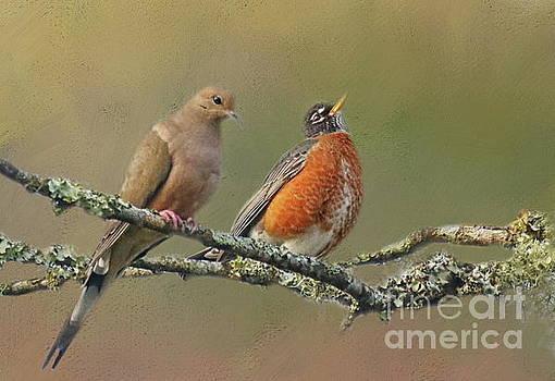 Feathered Friends by Myrna Bradshaw