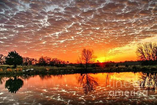 February 2015 East Texas Morning Sunrise by Lorri Crossno