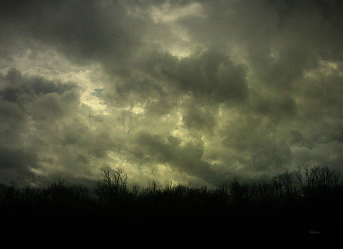 February Storm 2 by Cynthia Lassiter