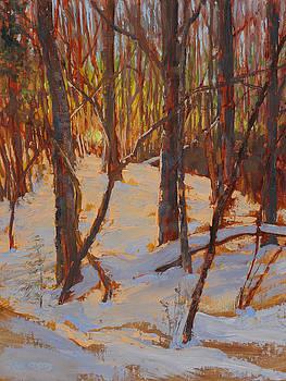 February Twilight by Ken Fiery