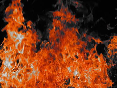Shane Brumfield - Feel the Heat