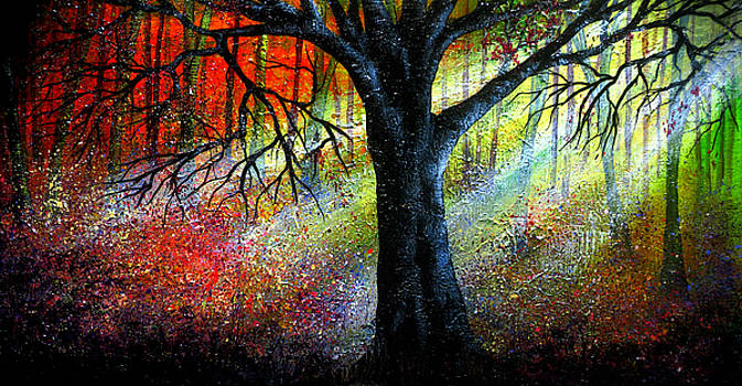 Feeling the Light by Ann Marie Bone