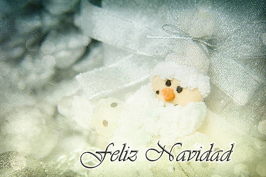 Angela Doelling AD DESIGN Photo and PhotoArt - Feliz Navidad