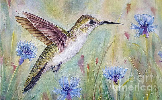 Female Ruby Throated Hummingbird by Patricia Pushaw