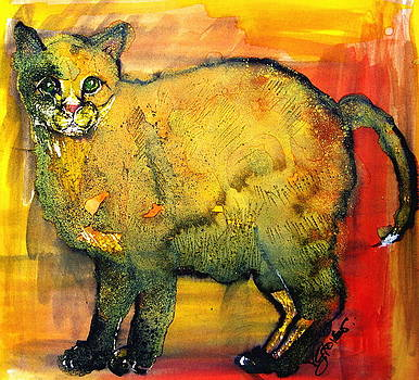 Feral Cat by Victoria Glover
