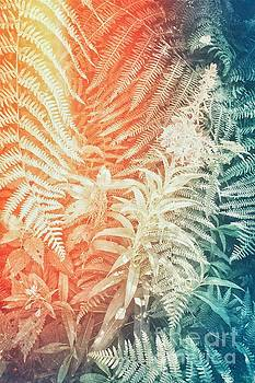 Fern and Fireweed 02 - Retro by Pete Edmunds
