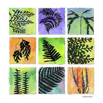 Ferns of Hawaii by Diane Thornton